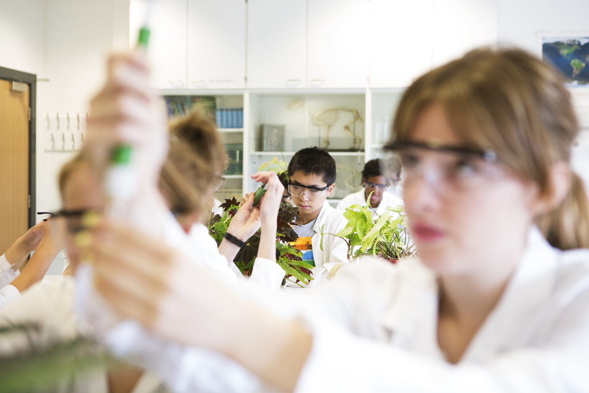 Students in a science lesson